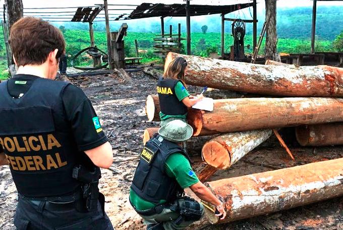 AEIM finaliza el informe preliminar de evaluación de riesgos (EUTR) sobre Brasil